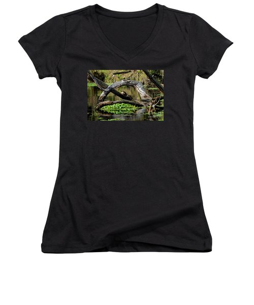 Painted Turtles Women's V-Neck T-Shirt (Junior Cut) by Paul Mashburn