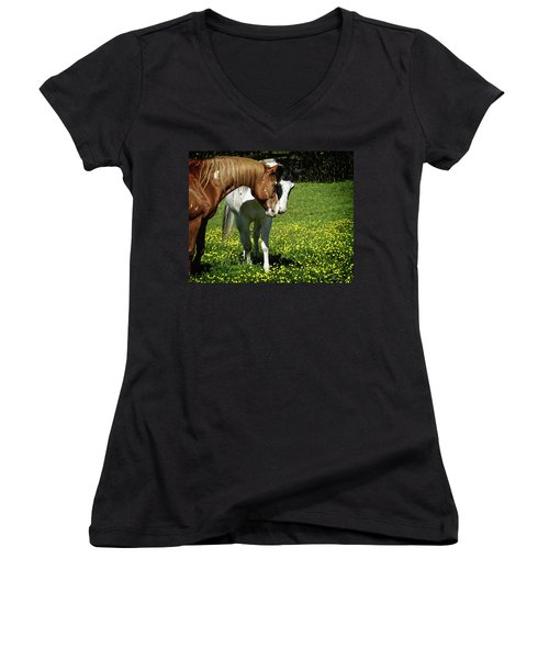 Paints And Buttercups Women's V-Neck (Athletic Fit)