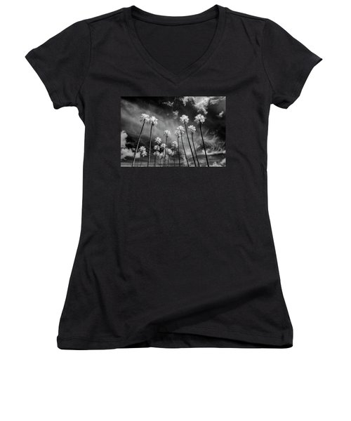 Palms Women's V-Neck T-Shirt (Junior Cut) by Sean Foster