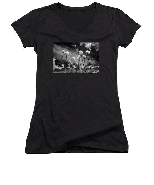 Palms Women's V-Neck T-Shirt