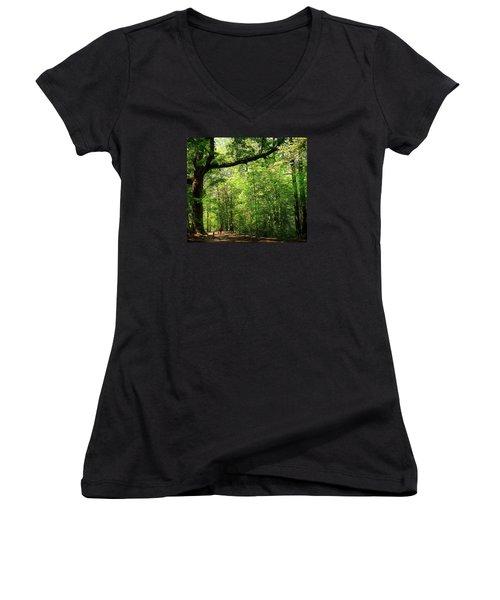 Paris Mountain State Park South Carolina Women's V-Neck T-Shirt (Junior Cut) by Bellesouth Studio