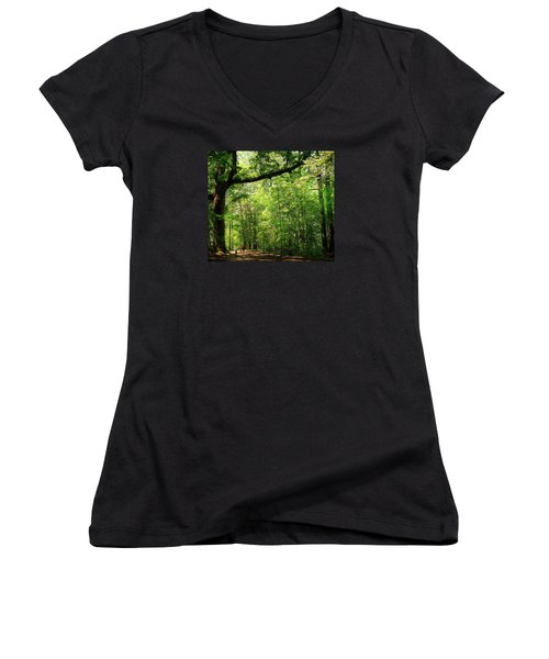 Paris Mountain State Park South Carolina Women's V-Neck