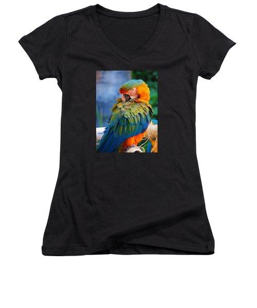 Parrot 2 Women's V-Neck T-Shirt