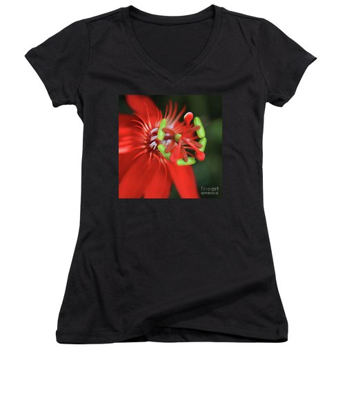 Women's V-Neck T-Shirt (Junior Cut) featuring the photograph Passiflora Vitifolia Scarlet Red Passion Flower by Sharon Mau