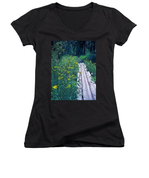 Path 4 Women's V-Neck T-Shirt (Junior Cut) by Pamela Cooper