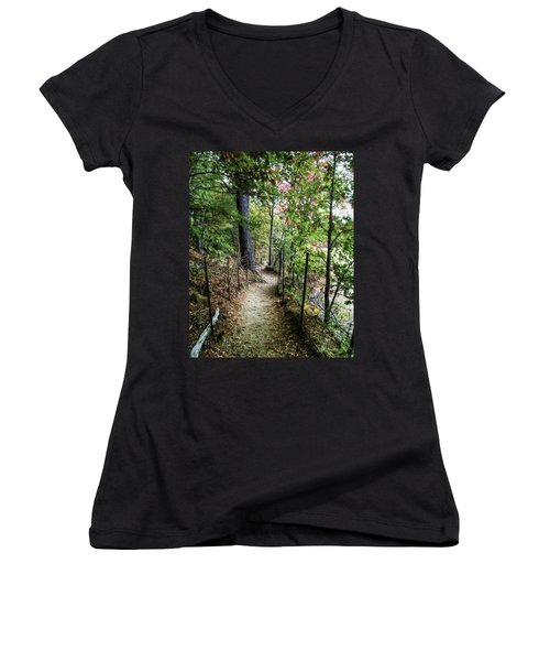Path Along The Pond Women's V-Neck T-Shirt