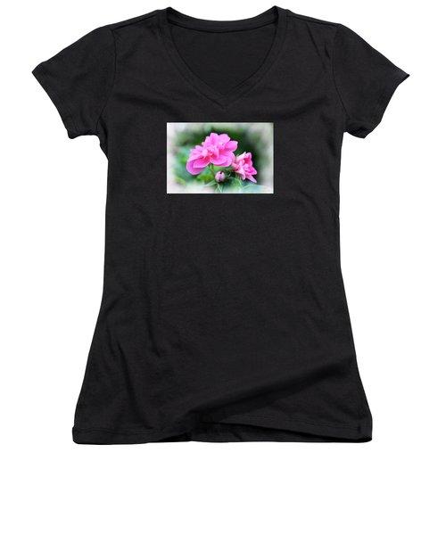 Pattern 336 _ Baby  Women's V-Neck T-Shirt