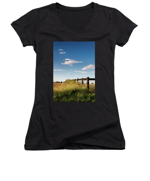 Peaceful Grazing Women's V-Neck T-Shirt