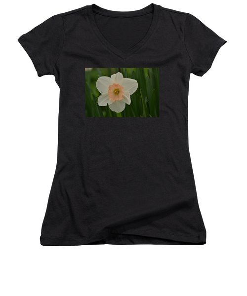 Peaches And Cream Women's V-Neck T-Shirt (Junior Cut)