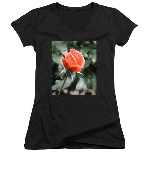 Women's V-Neck T-Shirt (Junior Cut) featuring the photograph Peachy Rose by Rand Herron