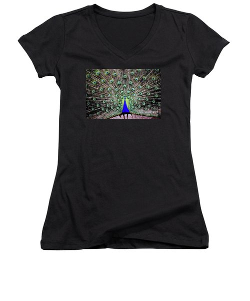 Peacock Women's V-Neck T-Shirt (Junior Cut) by Vivian Krug Cotton