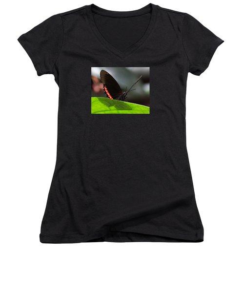 Peek-a-boo 8x10 Women's V-Neck (Athletic Fit)
