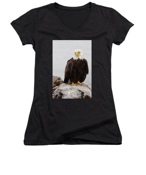 Perched Bald Eagle Women's V-Neck