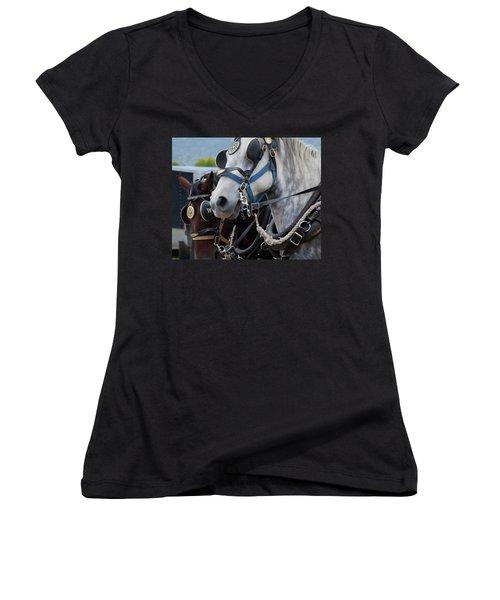 Women's V-Neck T-Shirt (Junior Cut) featuring the photograph Percheron Horses by Theresa Tahara