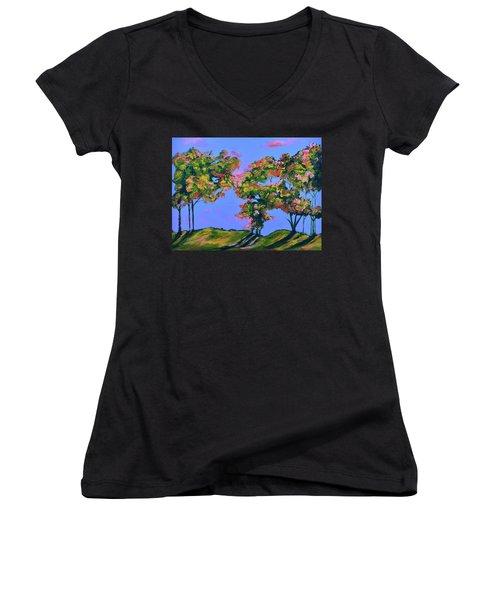 Periwinkle Twilight Women's V-Neck T-Shirt (Junior Cut) by Donna Blackhall