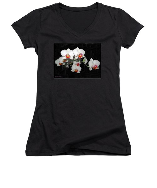 Phalaenopsis Orchids Women's V-Neck T-Shirt (Junior Cut) by Joyce Dickens