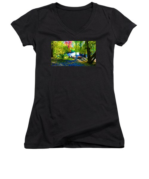 Picnic Women's V-Neck T-Shirt
