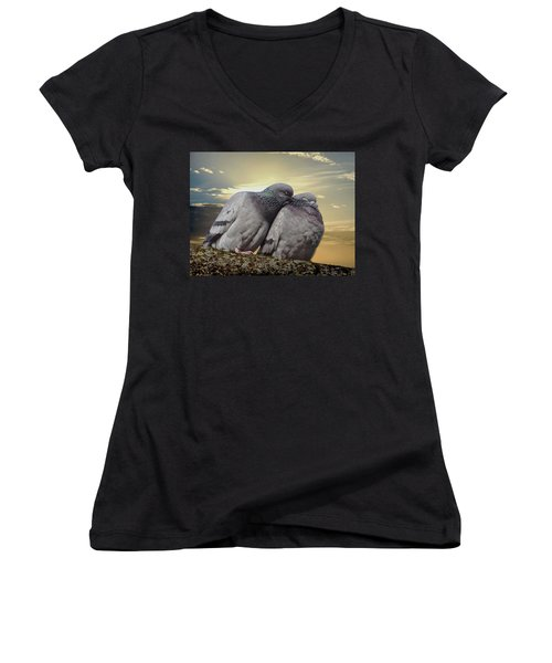 Pigeons In Love, Smooching On A Branch At Sunset Women's V-Neck (Athletic Fit)
