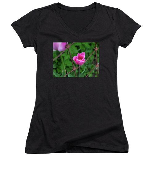 Pink In Stratford Women's V-Neck