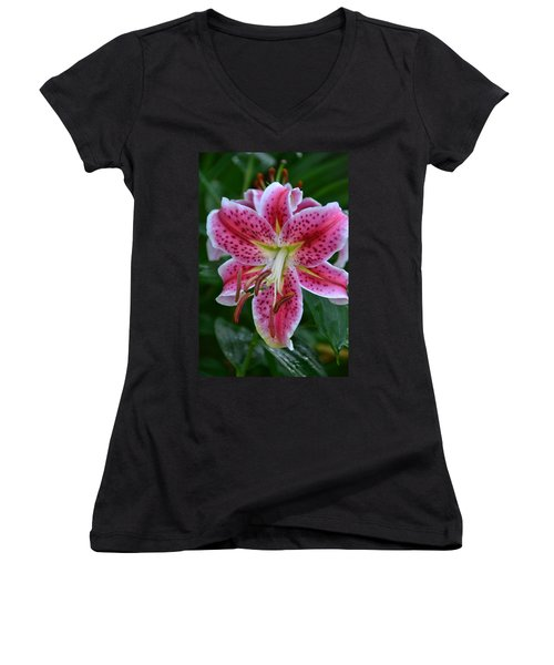 Pink Lily Women's V-Neck (Athletic Fit)