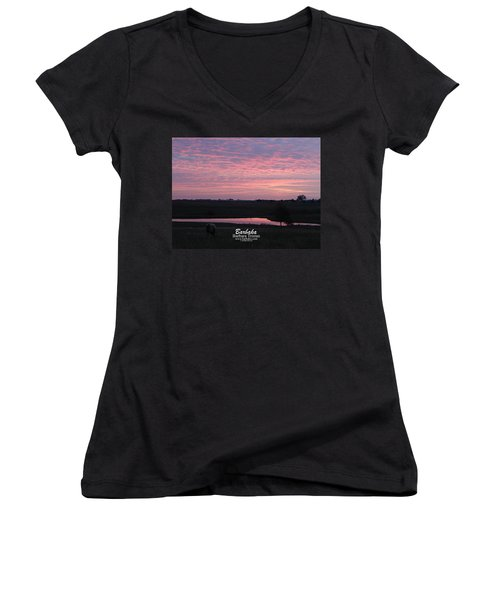 Pink Pond And Cow #5110 Women's V-Neck T-Shirt (Junior Cut) by Barbara Tristan