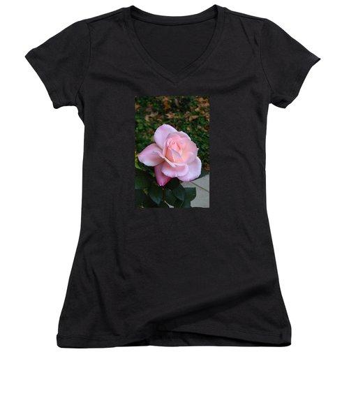 Pink Rose Women's V-Neck T-Shirt (Junior Cut) by Carla Parris