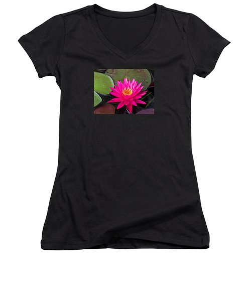 Pink Waterlily Garden Women's V-Neck (Athletic Fit)