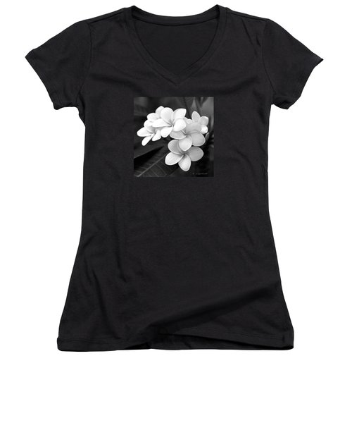 Plumeria - Black And White Women's V-Neck T-Shirt
