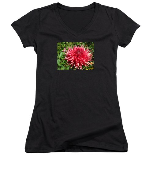 Pointed Pink Dahlia  Women's V-Neck T-Shirt