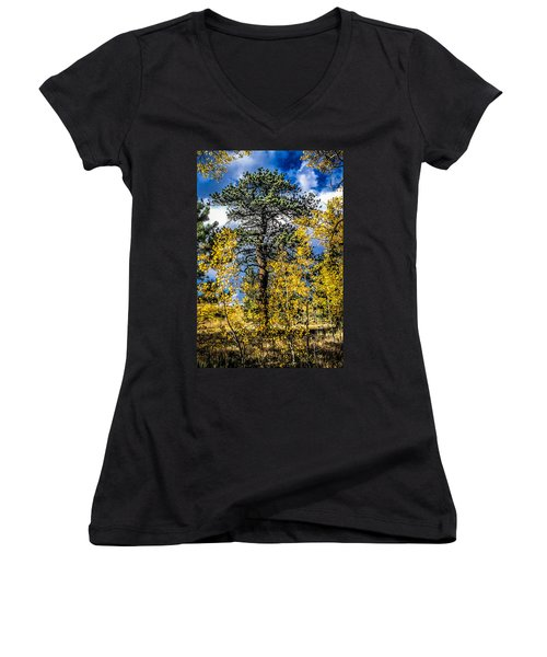 Ponderosa  Tree In The Aspens Of Fall Colorado Women's V-Neck T-Shirt (Junior Cut) by John Brink