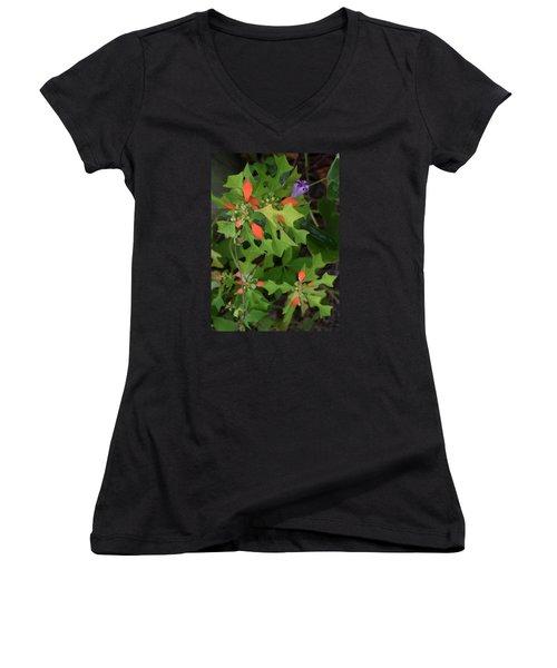 Pop Of Color Women's V-Neck T-Shirt