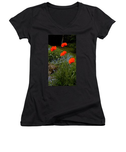 Poppy Foursome Women's V-Neck T-Shirt (Junior Cut) by Renate Nadi Wesley