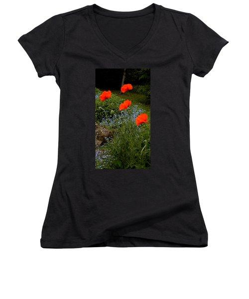 Poppy Foursome Women's V-Neck T-Shirt (Junior Cut) by Renate Nadi Wesley