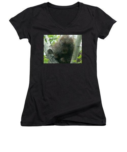 Porcupine Tree Women's V-Neck