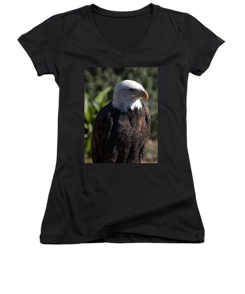Portrait Bald Eagle  Women's V-Neck