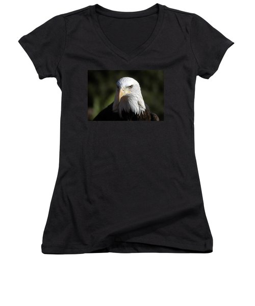 Portrait Of A Bald Eagle Women's V-Neck