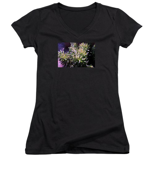 Potmates 4 Women's V-Neck T-Shirt (Junior Cut) by M Diane Bonaparte