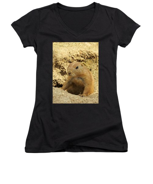 Prairie Dog Peek Women's V-Neck T-Shirt (Junior Cut) by Robin Regan