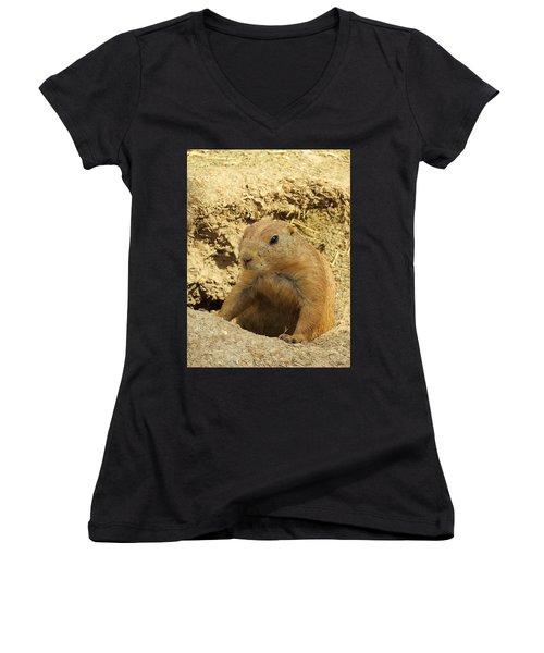 Prairie Dog Peek Women's V-Neck T-Shirt
