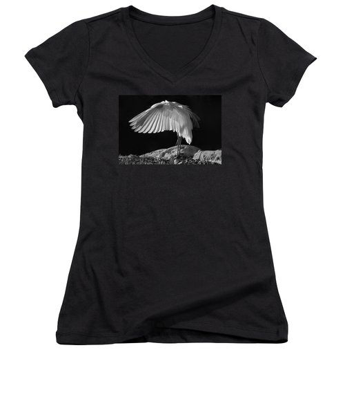 Preening Great Egret By H H Photography Of Florida Women's V-Neck T-Shirt