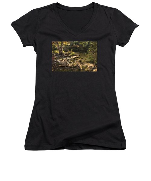 Women's V-Neck T-Shirt (Junior Cut) featuring the photograph Private Retreat by Tamyra Ayles