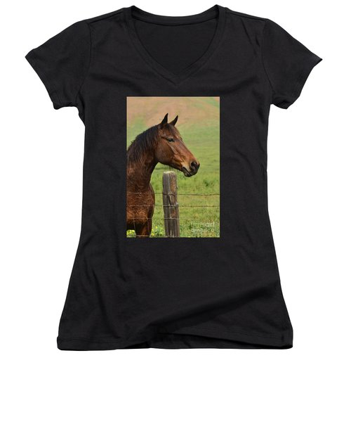 Women's V-Neck T-Shirt (Junior Cut) featuring the photograph Profile Of A Bay by Debby Pueschel