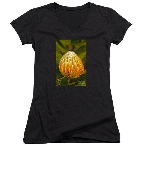 Proteas Ready To Blossom  Women's V-Neck T-Shirt (Junior Cut) by Michael Cinnamond