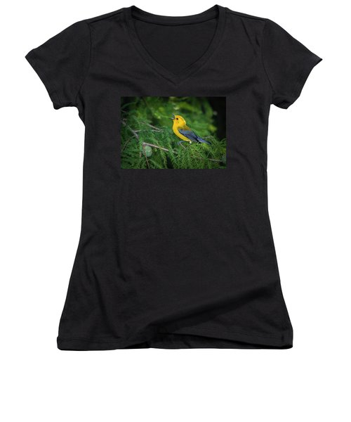 Prothonatory Warbler 9809 Women's V-Neck