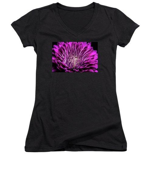 Purple Beauty Women's V-Neck T-Shirt