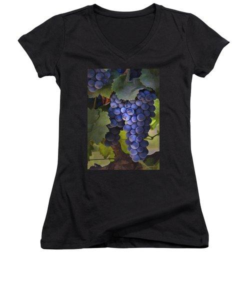Purple Blush Women's V-Neck T-Shirt