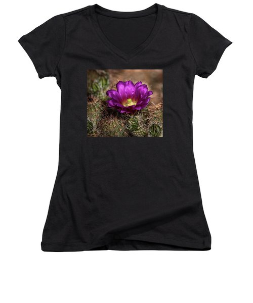 Women's V-Neck T-Shirt (Junior Cut) featuring the photograph Purple Cactus Flower  by Saija Lehtonen
