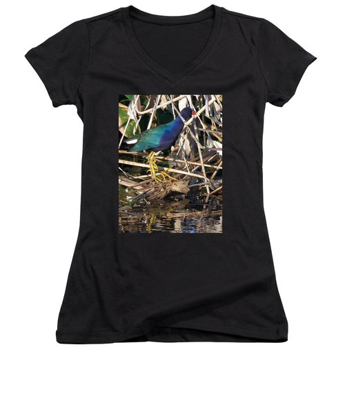 Purple Galinule  Women's V-Neck T-Shirt (Junior Cut) by Chris Mercer