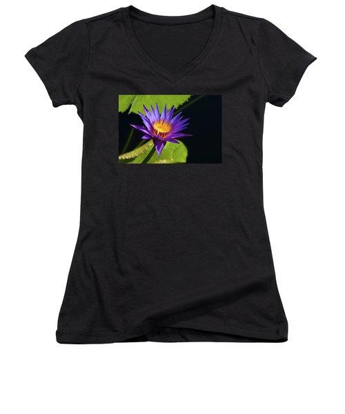 Women's V-Neck T-Shirt (Junior Cut) featuring the photograph Purple Gold by Steve Stuller