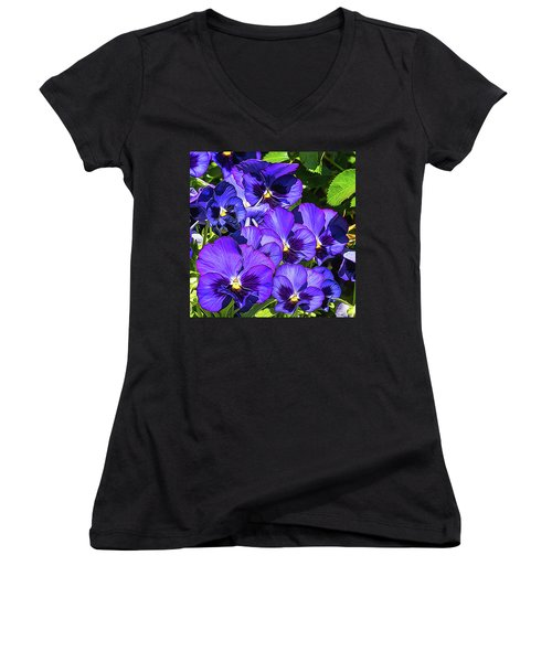 Purple Pansies In Morning Light Women's V-Neck T-Shirt